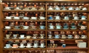 「鶴岡八幡宮周辺おすすめカフェ8選」地元民御用達!ローカルで素敵なお店を紹介します。